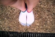 Odd socks for life