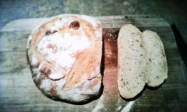 Artsy loaf shot... Not even sorry