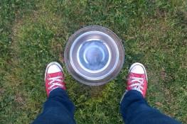 Dog-bowl-chic